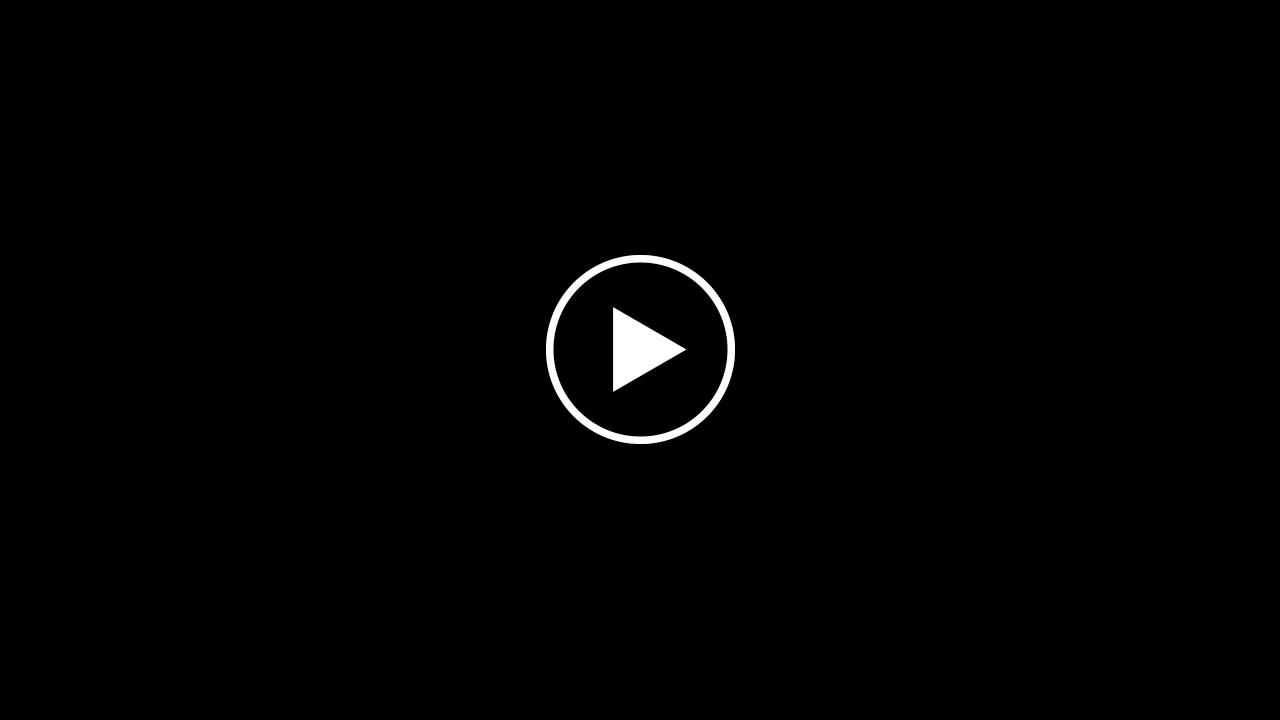 filmato_braINT_rev_2017_01_20